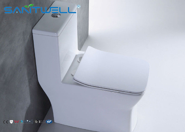 Public sanitary ware washdown Ceramic Toilet one piece WC OEM