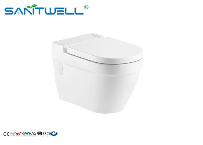 Comfortable Wall Mounted WC One Piece With Wash Down Flushing System supplier