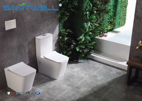 High end European Standard Wall Faced Toilet Ceramic Two Piece 545*360*410mm